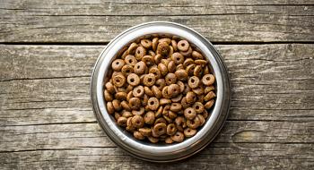 croquettes sans céréales