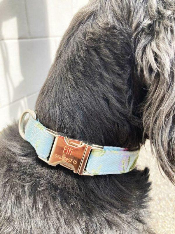 Collier personnalisable pour chien