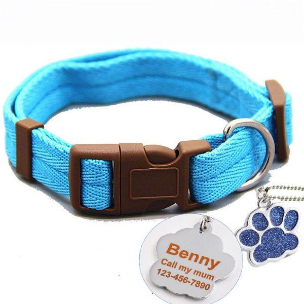 Collier bleu pour chien + inscription médaille