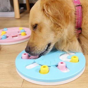 Puzzle jouet pour chien