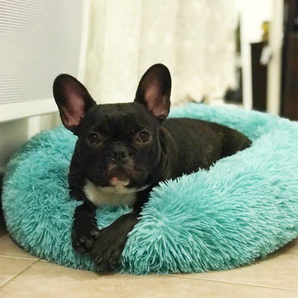 Panier rond pour chien apaisant tout confort
