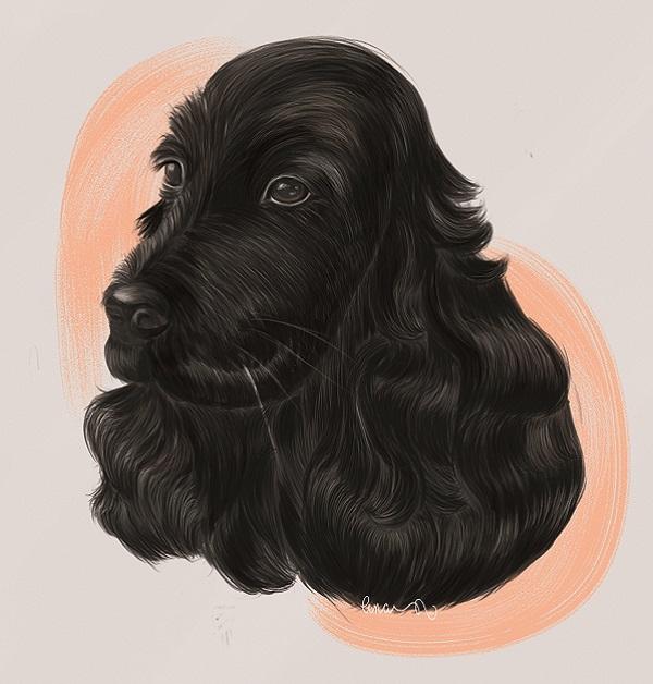 Portrait numérique Cocker noir