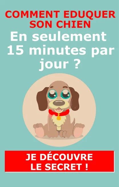 éduquer son chien en 15 minutes par jour